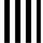 Black and White Rustic Stripe